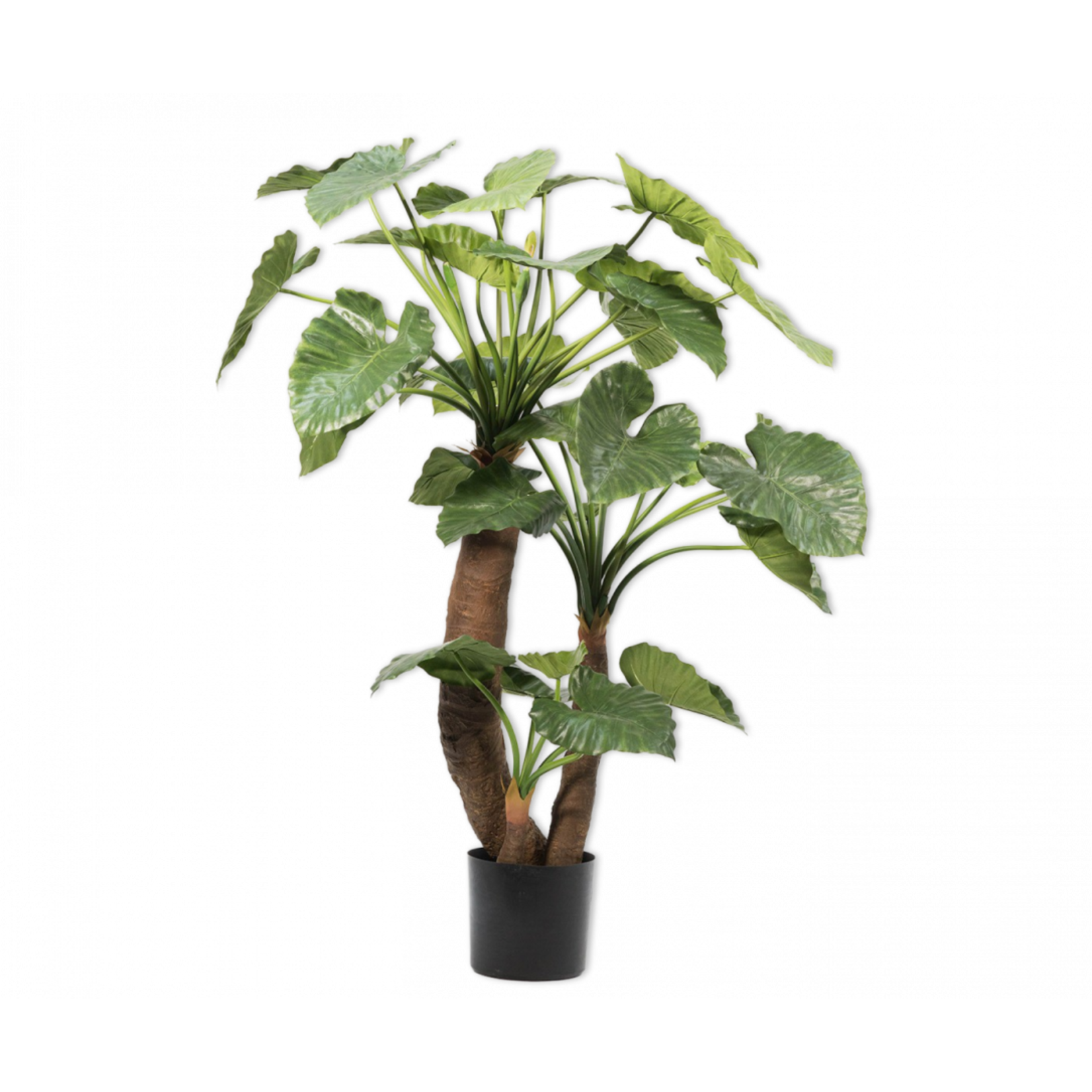 Silk-ka Alocasia Groen | 170 cm