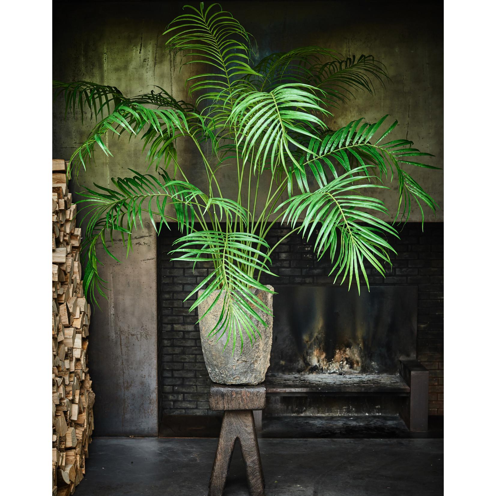 Silk-ka Palm Green | 152 cm