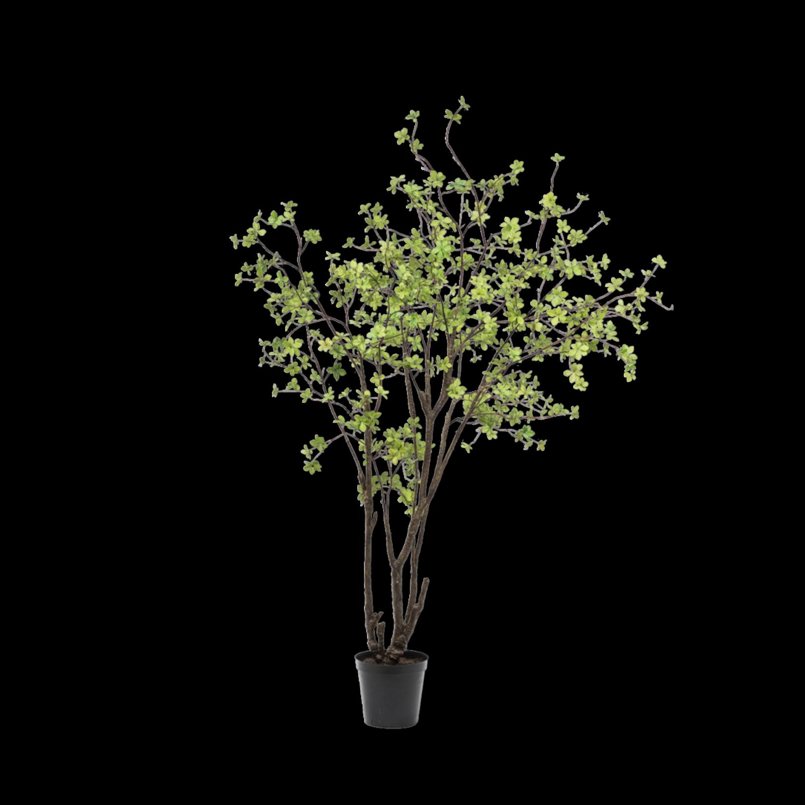 Silk-ka Arbre vert | 244 cm