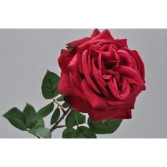 Silk-ka Rose avec feuille rose / rouge 70 cm
