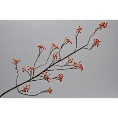 Silk-ka Bessentak oranje 120 cm