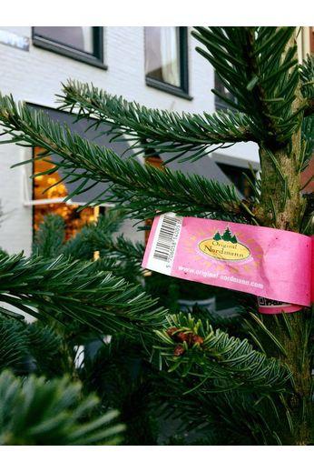 Nordmann Original Nordmann kerstboom 175 cm /  200 cm
