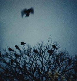 Foam Editions UITVERKOCHT / Masahisa Fukase - Raven Scenes 006, 1977-1978