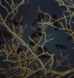 Foam Editions Masahisa Fukase - Raven Scenes 009, 1977-1978