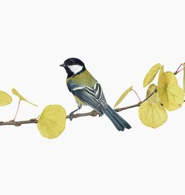 Foam Editions Sanna Kannisto - Great tit on a Katsura Branch, 2020