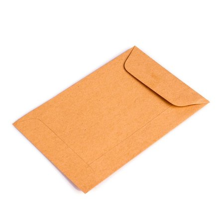 Bruine loonzakjes 95 x 145 mm uit 70 grams kraft pakje van 1000 stuks