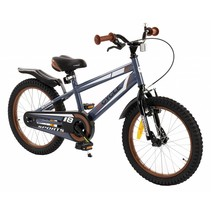 2Cycle Sports Kinderfiets - 18 inch - Grijs
