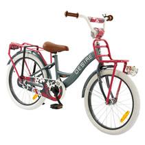 2Cycle Meisjesfiets 20 inch grijs-roze