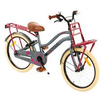 2Cycle Heart Kinderfiets - 20 inch - Voordrager - Grijs-Roze