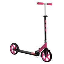 Sajan Roller - Große Räder - 20cm - Rosa