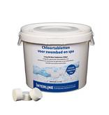 Interline Interline Chloor Tabletten(20gram) 2,5kg