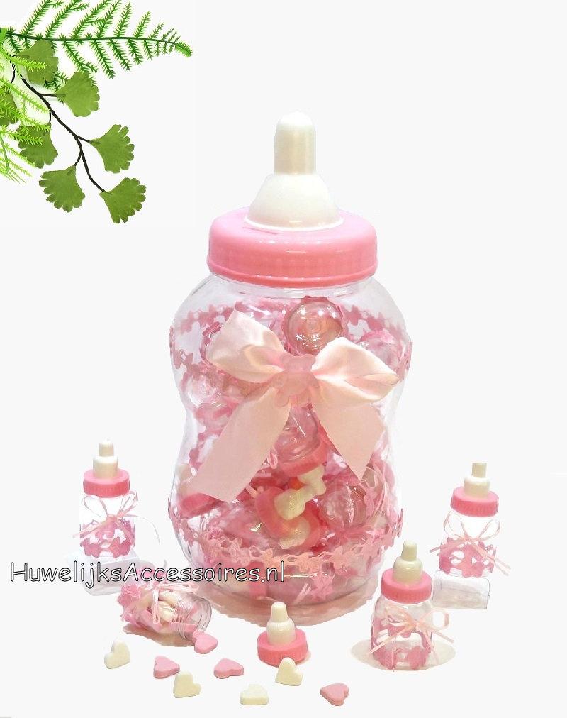 Grote fopper fles als spaarpot met 30 kleine roze flesjes