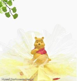 Disney Disney Winnie the Pooh geboorte bedankje