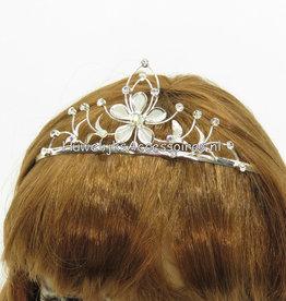 Prachtige tiara met strass steentjes