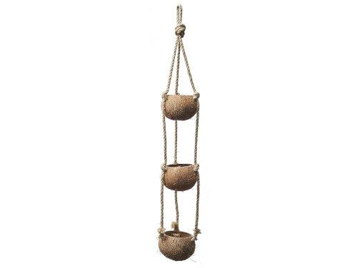 Coconut pendant 3