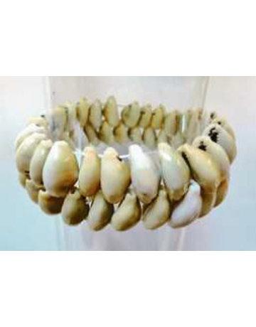 Double shell bracelet