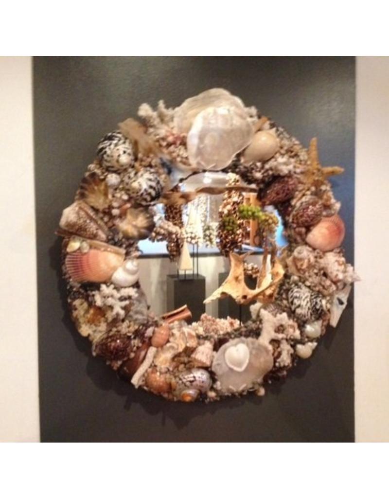Unique shell mirror
