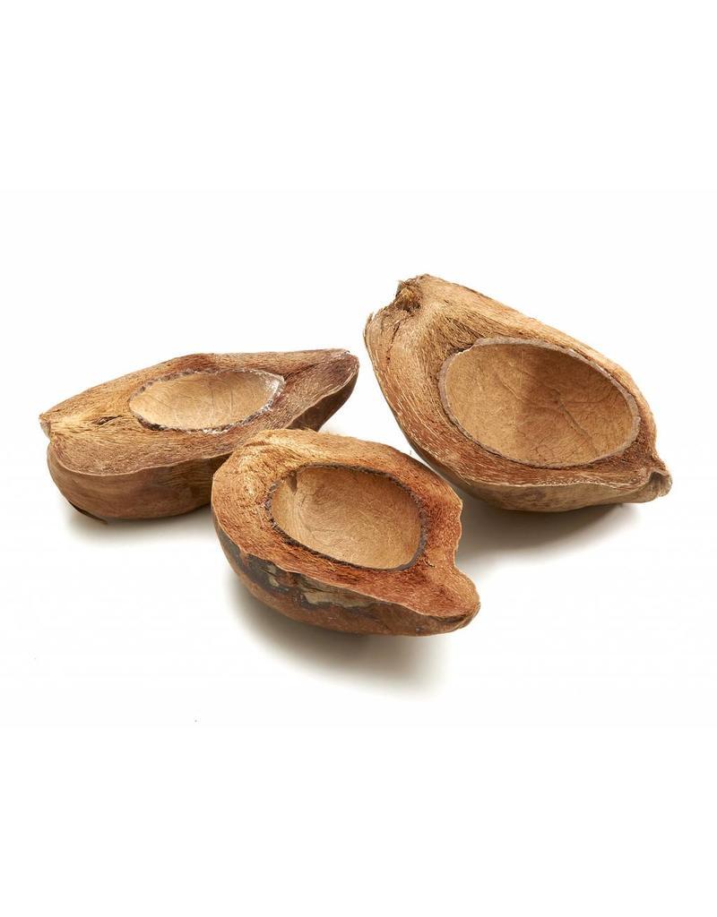 Coconut halved Natural