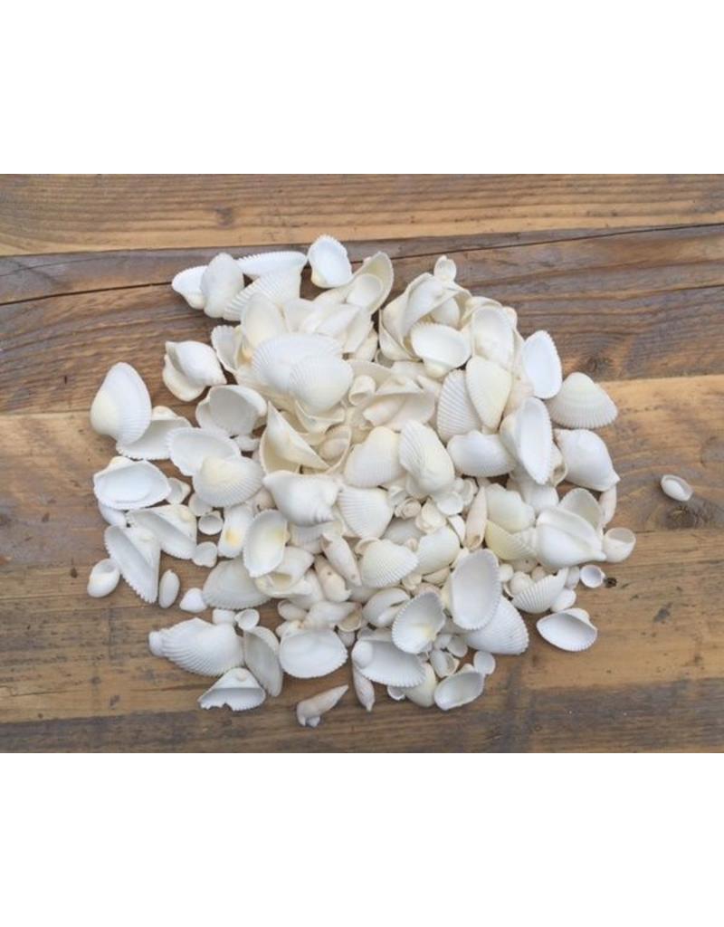 Shell mix white