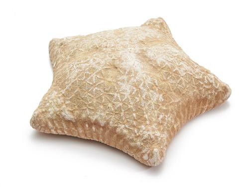 Pillow starfisch