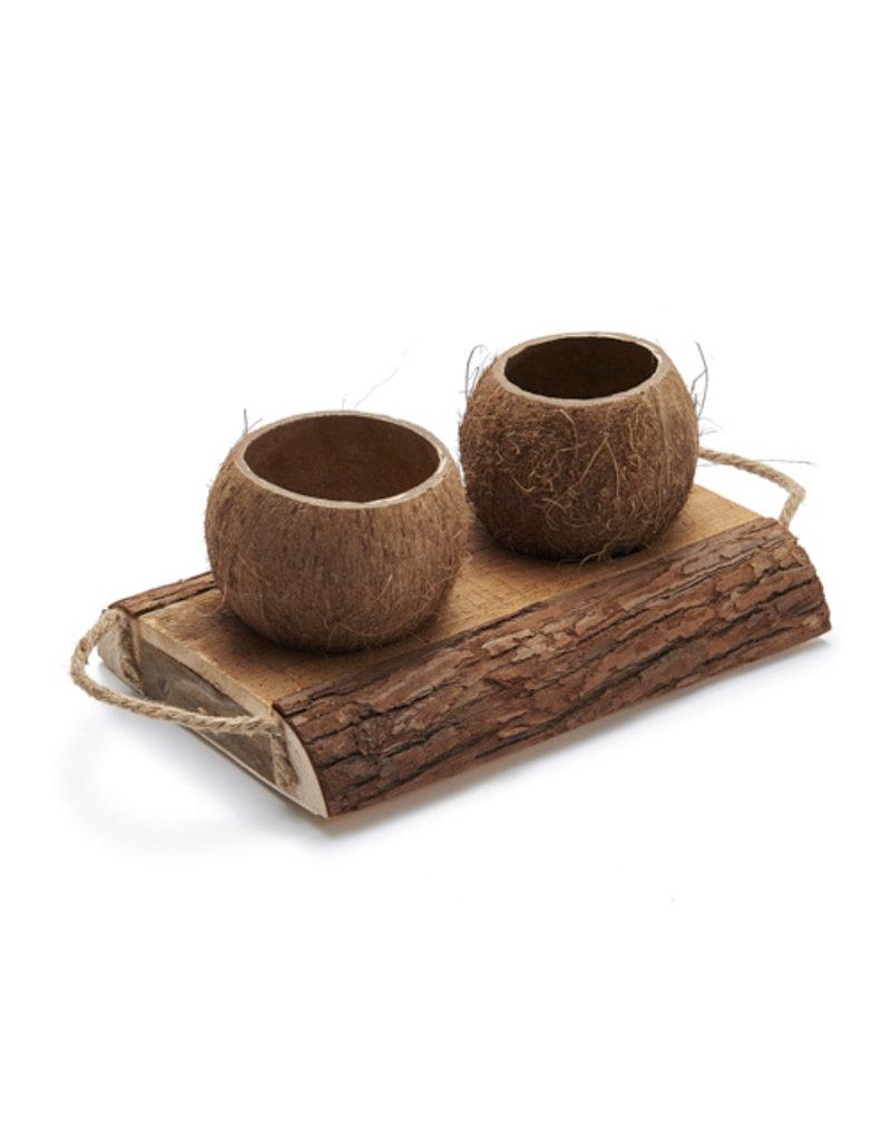 Kokosnoot plantenbakjes