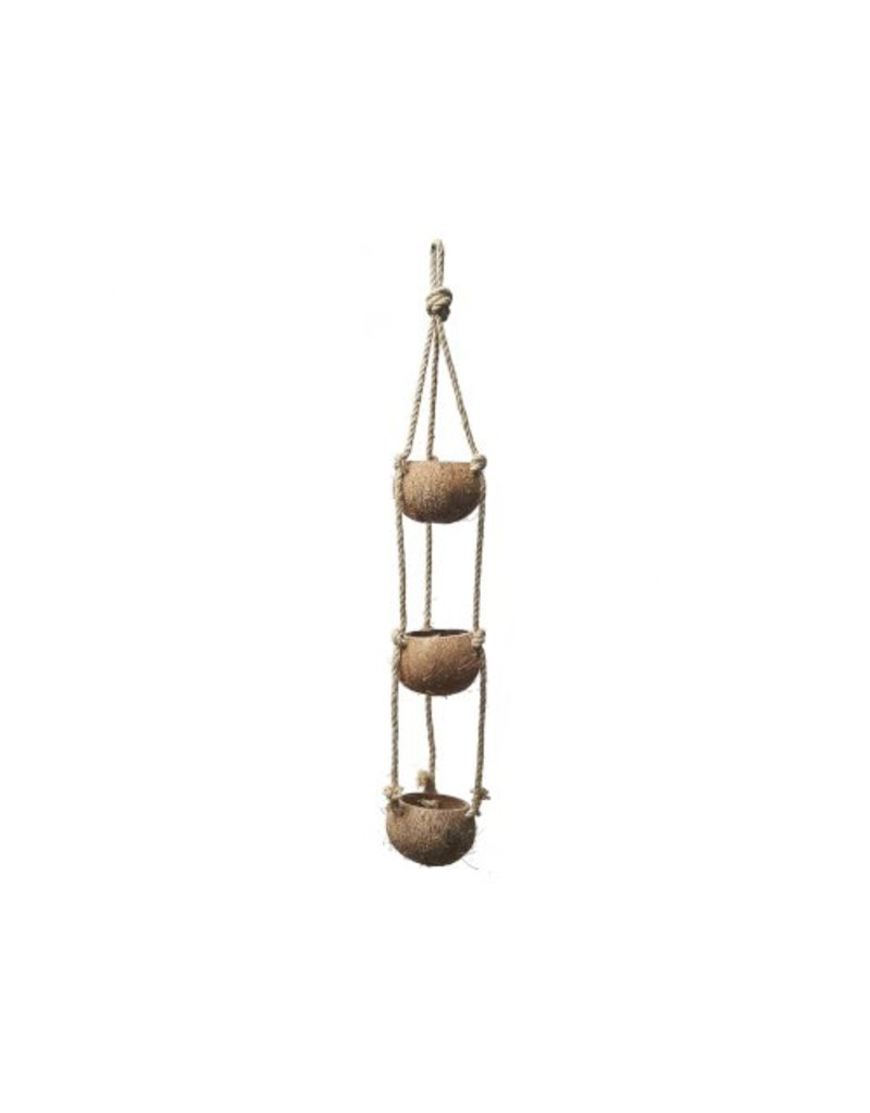 Coconut pendant