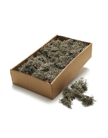 Moss Gray 500 grams