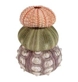 Sea urchin tower