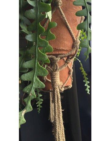 Plantenhanger touw XXL