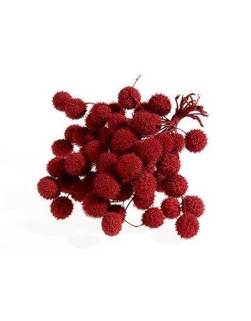 Plataan balls red