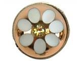 Sari Design chique button, goud met witte bloem