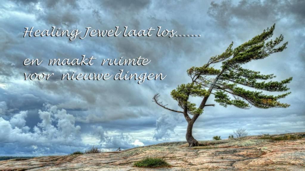 Healing Jewel verdwijnt....  opheffingsuitverkoop!