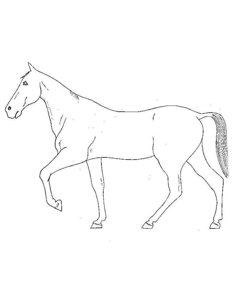 NVM 40.41.004 paarden modelleren