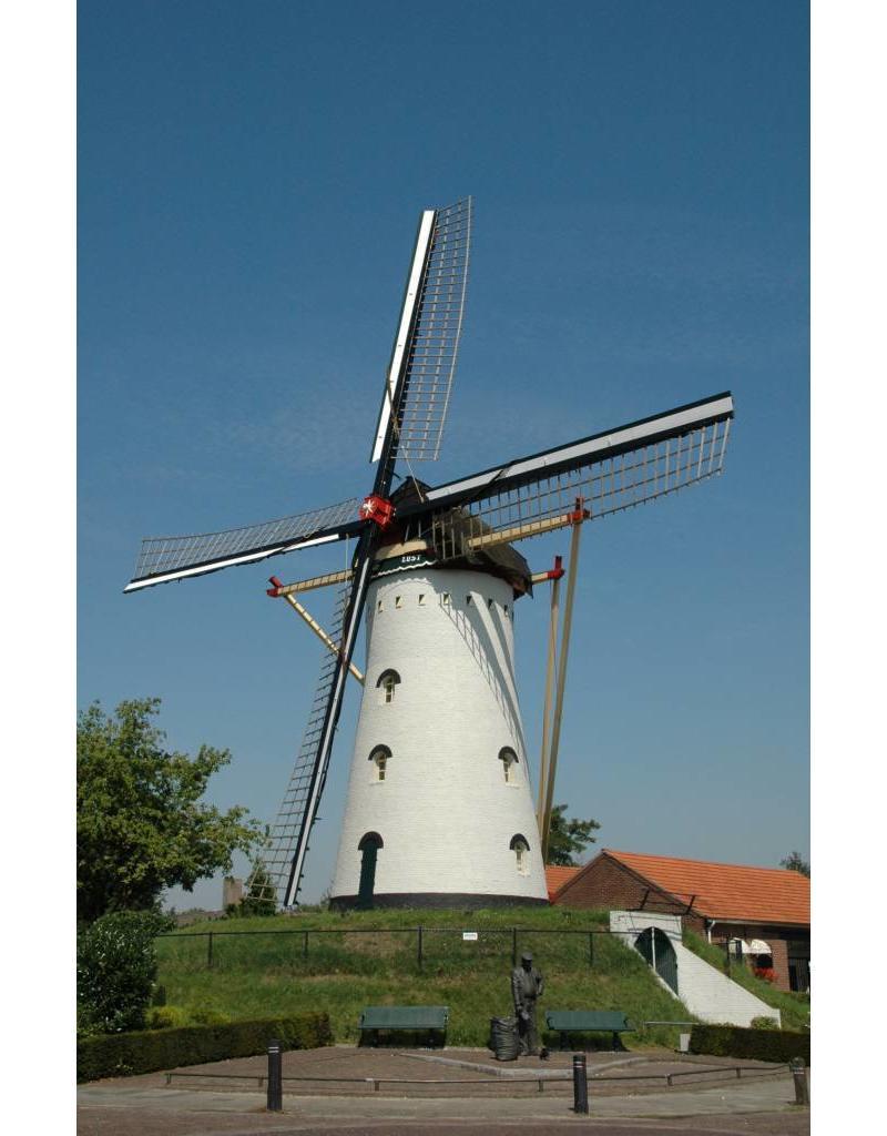 NVM 30.06.030 korenmolen Windlust te Vorstenbosch (NB)
