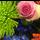 Rouwboeket Plukbloemen