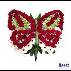 Rouwstuk Vlinder