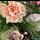 Rouwstuk ovaal veldbloemen