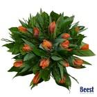 Boeket tulpen oranje