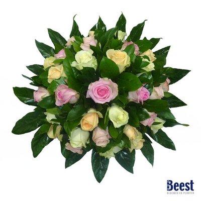 Biedermeier gemengde Avalanche rozen