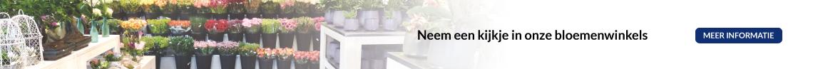 Homepage Van Beest Bloemen en Planten