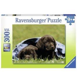 Ravensburger Puzzels Labrador Pups XXL