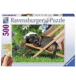Ravensburger Puzzels Schattige Teckel