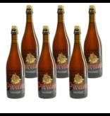 WB / CLIP 06 Piraat Tripel - 75cl - Set of 6 bottles