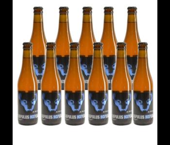 Lupulus Hopera - 33cl - Set of 11 bottles