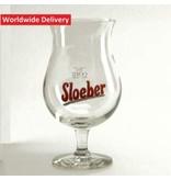 WD Sloeber Bierglas