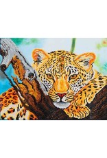 Diamond Dotz Diamond Painting pakket Leopard Look