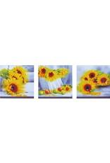 Diamond Dotz Diamond Painting pakket Sunflower Days