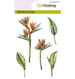 CraftEmotions Clear stempel Flower birds of paradise