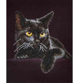 Diamond Dotz Diamond Painting pakket Midnight Cat