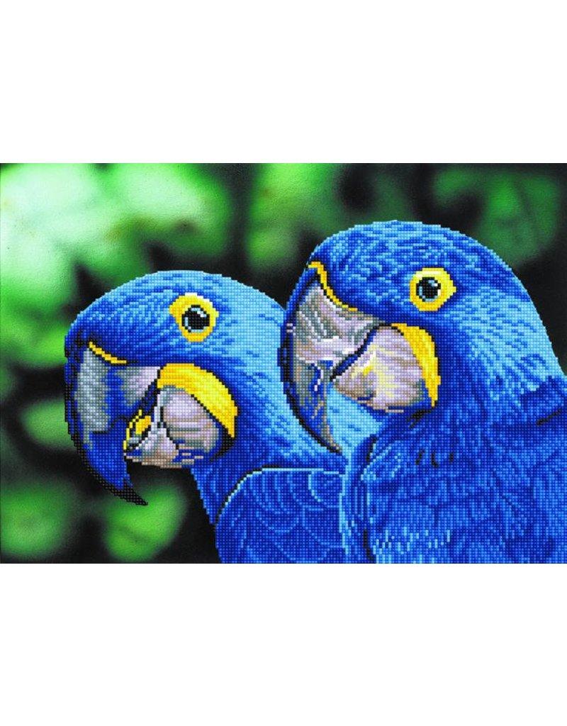 Diamond Dotz Diamond Painting pakket Blue Hyacinth Macaws
